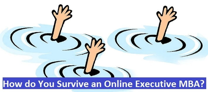 How do You Survive an Online Executive MBA?