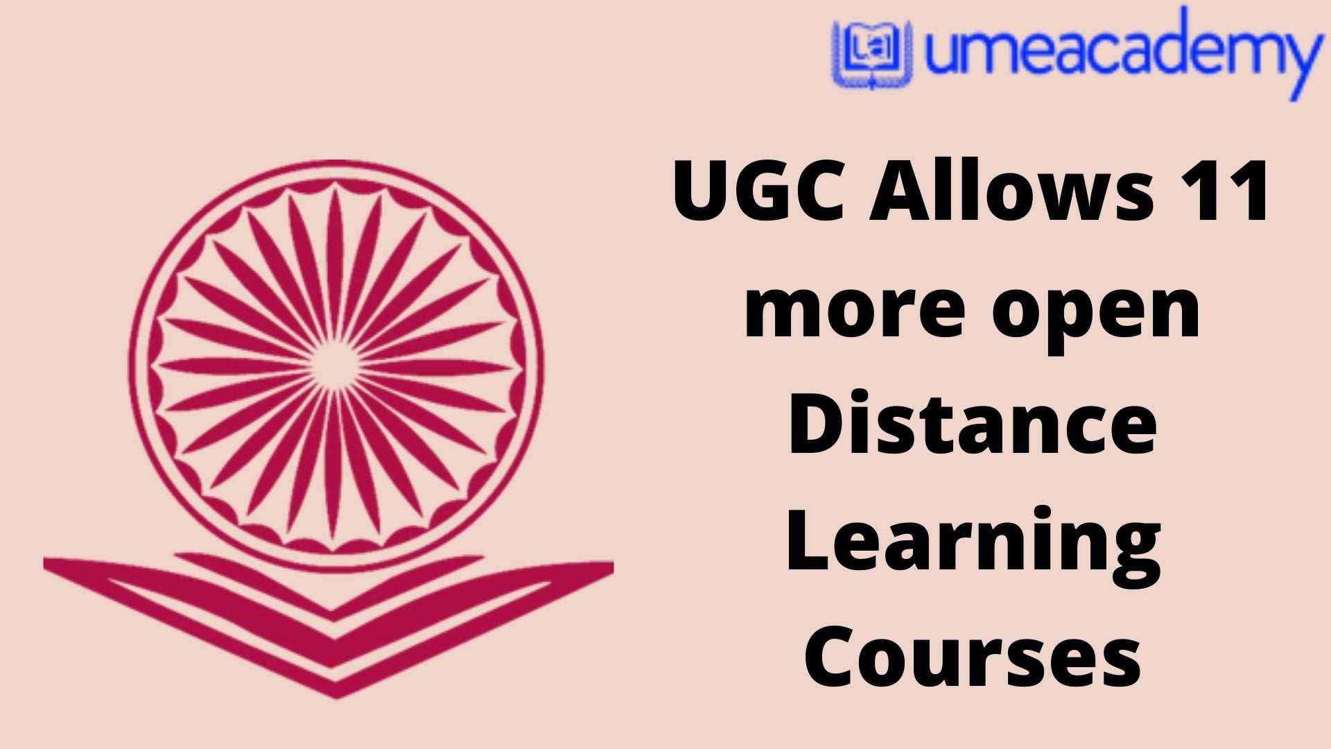 UGC Allows 11 more open Distance Learning Courses