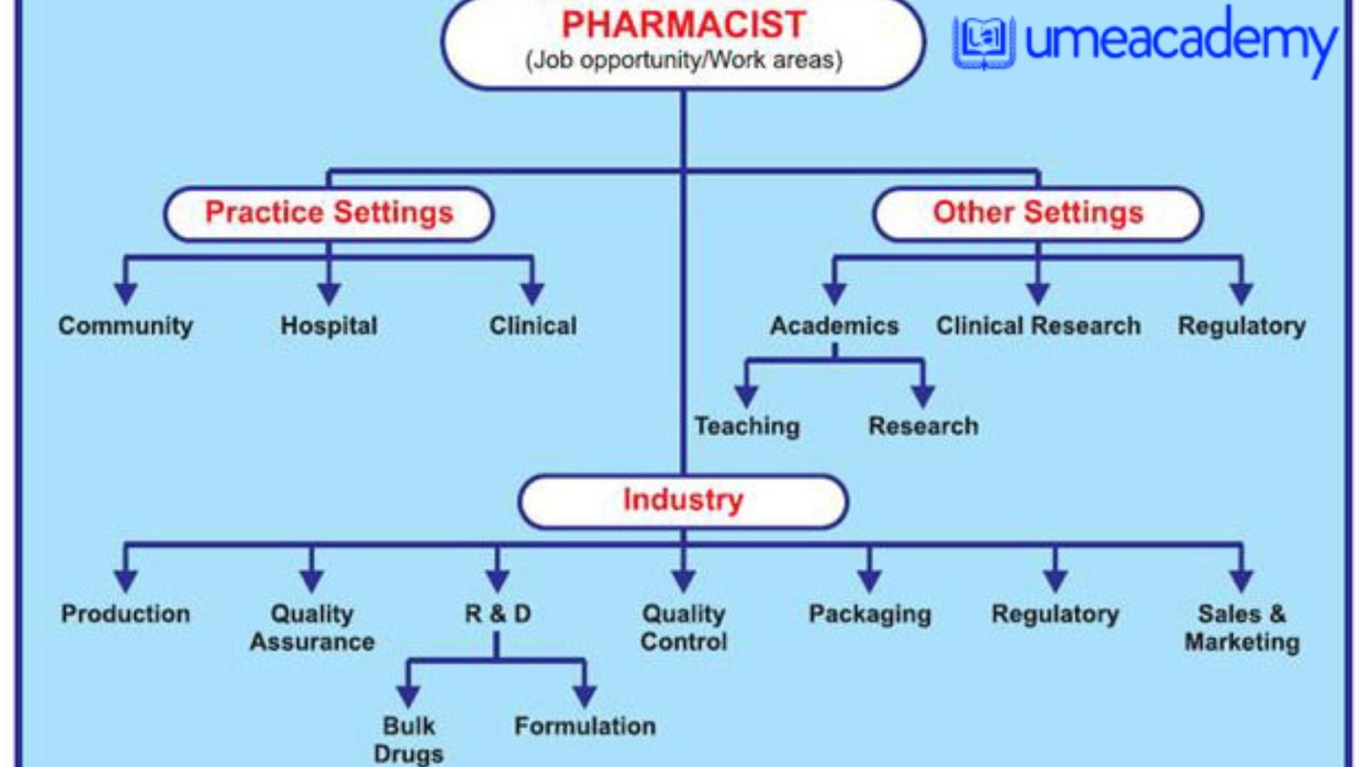Read more about the article Opportunity for M. Pharma, B. Pharma as Medical/Apply Now